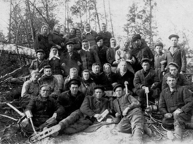 Лісоповал, Марийська АРСР, 1950р.
