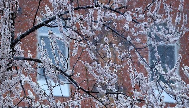 весна у Харкові